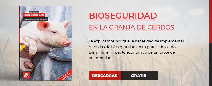 bioseguridad-en-la-granja-de-cerdos
